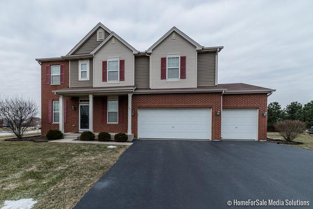 201 Bolton Court, Oswego, IL 60543 (MLS #10296442) :: Baz Realty Network | Keller Williams Preferred Realty