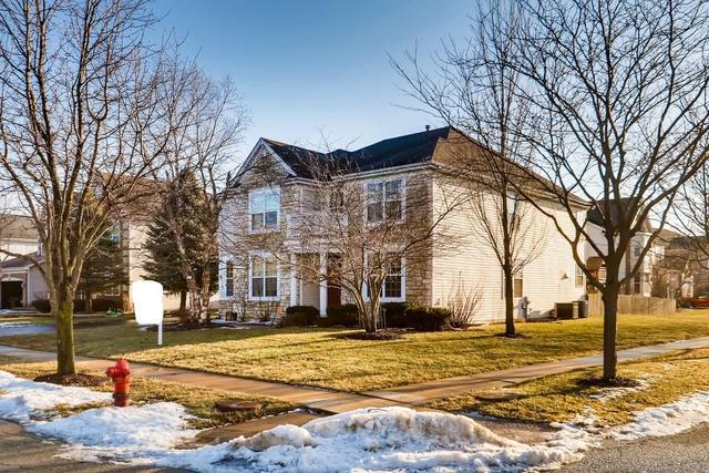 246 Ashcroft Lane, Oswego, IL 60543 (MLS #10296446) :: Baz Realty Network | Keller Williams Preferred Realty