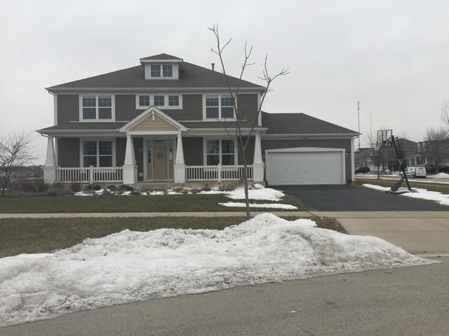 265 Tumbleweed Way, Elgin, IL 60124 (MLS #10297216) :: Baz Realty Network | Keller Williams Preferred Realty
