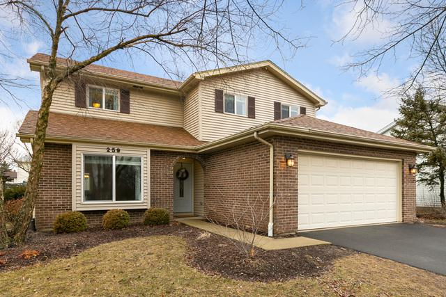 259 Westbrook Circle, Naperville, IL 60565 (MLS #10297595) :: The Dena Furlow Team - Keller Williams Realty