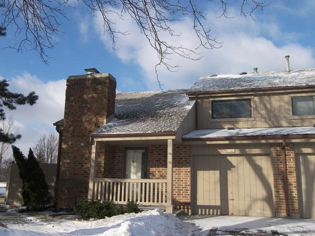 142 Potawatomi Trail A, Lake Zurich, IL 60047 (MLS #10297733) :: Baz Realty Network | Keller Williams Preferred Realty