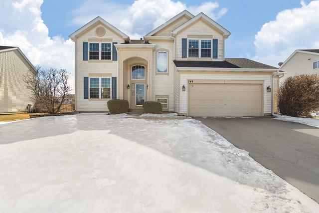 249 Woodland Park Circle, Gilberts, IL 60136 (MLS #10297810) :: Baz Realty Network | Keller Williams Preferred Realty