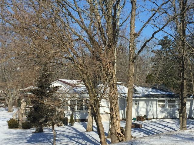 402 Wolf Drive, Loda, IL 60948 (MLS #10299111) :: Ryan Dallas Real Estate
