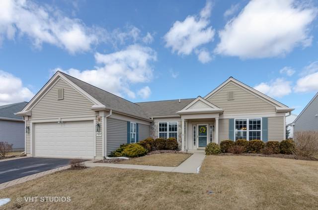 13634 Ivy Drive, Huntley, IL 60142 (MLS #10299280) :: HomesForSale123.com