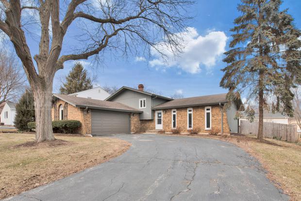 49 Redstart Road, Naperville, IL 60565 (MLS #10299671) :: Helen Oliveri Real Estate