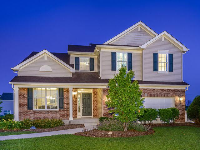 507 Cahokia Street, Joliet, IL 60431 (MLS #10299763) :: Berkshire Hathaway HomeServices Snyder Real Estate