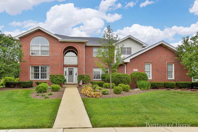 22122 Clove Drive, Frankfort, IL 60423 (MLS #10300360) :: Baz Realty Network | Keller Williams Preferred Realty