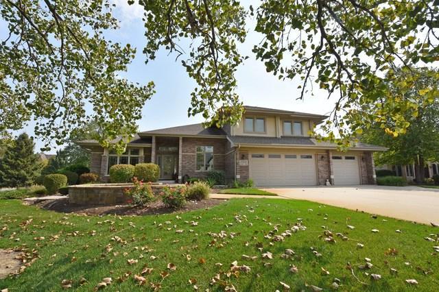 21333 Saddle Lane, Mokena, IL 60448 (MLS #10300750) :: Baz Realty Network | Keller Williams Preferred Realty