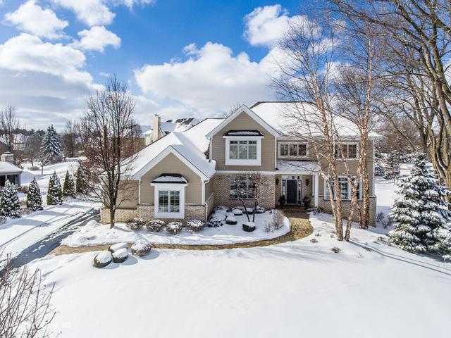 22830 N South Woodcrest Lane, Kildeer, IL 60047 (MLS #10300880) :: Helen Oliveri Real Estate