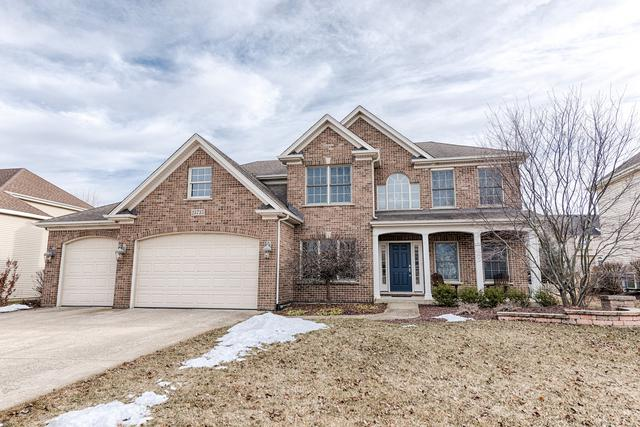 25735 Meadowland Circle, Plainfield, IL 60585 (MLS #10301126) :: Baz Realty Network | Keller Williams Preferred Realty