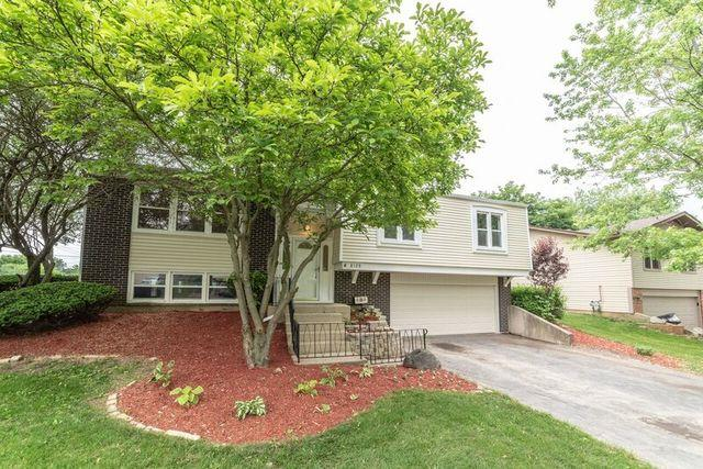 8128 Carolwood Lane, Woodridge, IL 60517 (MLS #10302321) :: Helen Oliveri Real Estate