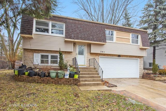 341 Lyons Drive, Bolingbrook, IL 60440 (MLS #10303073) :: Baz Realty Network | Keller Williams Preferred Realty