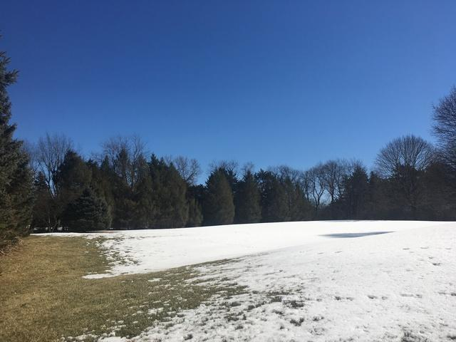 Lot #127 Bull Valley Drive, Woodstock, IL 60098 (MLS #10304195) :: Suburban Life Realty