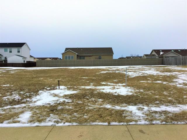 311 Robert Drive, Fisher, IL 61843 (MLS #10304249) :: Ryan Dallas Real Estate