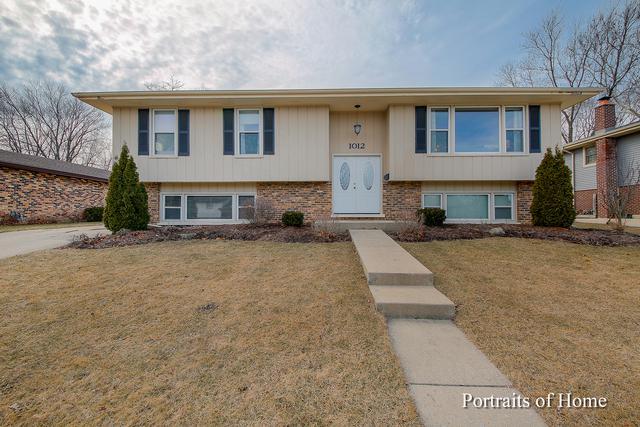 1012 Hillview Drive, Lemont, IL 60439 (MLS #10305023) :: HomesForSale123.com
