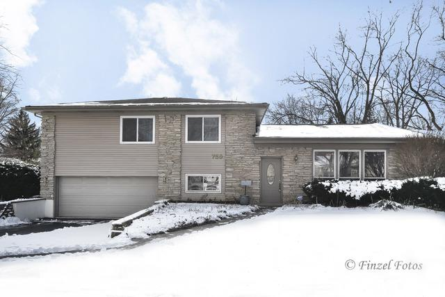 759 E Stark Drive, Palatine, IL 60074 (MLS #10305160) :: Baz Realty Network | Keller Williams Preferred Realty