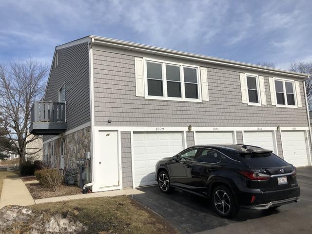 1029 Brunswick Harbor #1029, Schaumburg, IL 60193 (MLS #10305895) :: Baz Realty Network | Keller Williams Preferred Realty