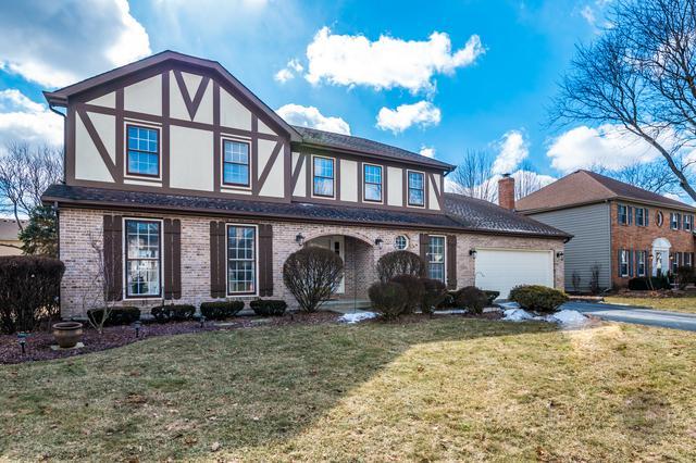 440 Du Pahze Street, Naperville, IL 60565 (MLS #10306077) :: HomesForSale123.com