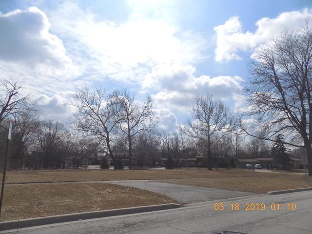 2338 Carroll Parkway, Flossmoor, IL 60422 (MLS #10306520) :: The Dena Furlow Team - Keller Williams Realty