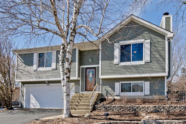 550 Waterford Drive, Lindenhurst, IL 60046 (MLS #10307154) :: Helen Oliveri Real Estate