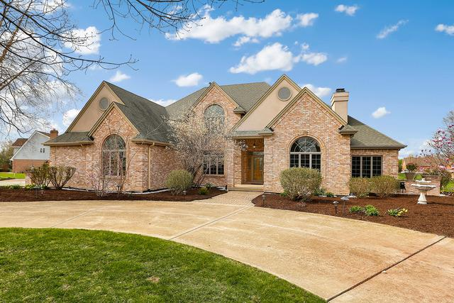 17650 S Richmond Road, Plainfield, IL 60586 (MLS #10307433) :: Janet Jurich Realty Group