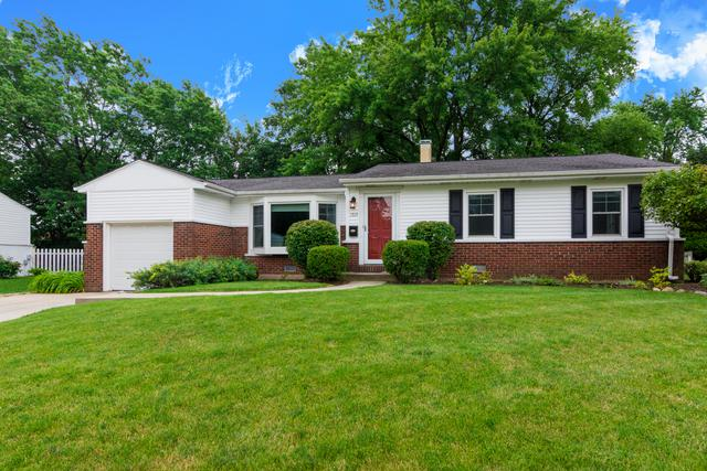 1513 E Alison Drive, Palatine, IL 60074 (MLS #10307483) :: Baz Realty Network | Keller Williams Preferred Realty