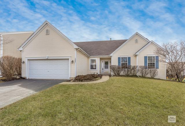 1345 Walnut Ridge Drive, Montgomery, IL 60538 (MLS #10307781) :: Baz Realty Network | Keller Williams Preferred Realty