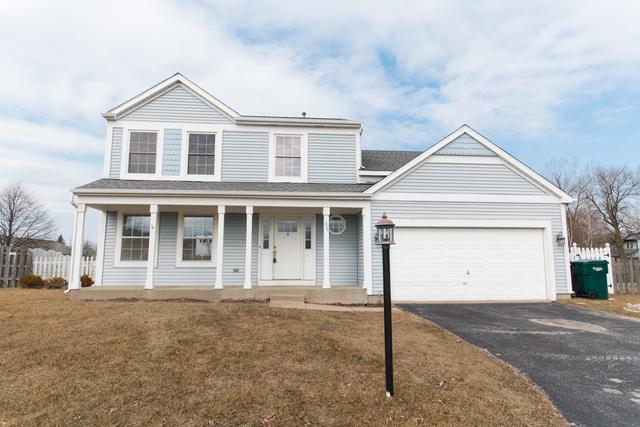 378 Buck Drive, Hainesville, IL 60030 (MLS #10307816) :: Baz Realty Network | Keller Williams Preferred Realty