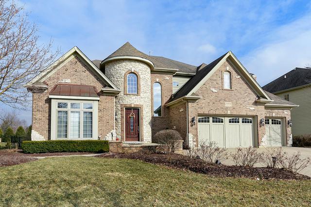 3008 Seiler Drive, Naperville, IL 60565 (MLS #10308023) :: The Dena Furlow Team - Keller Williams Realty