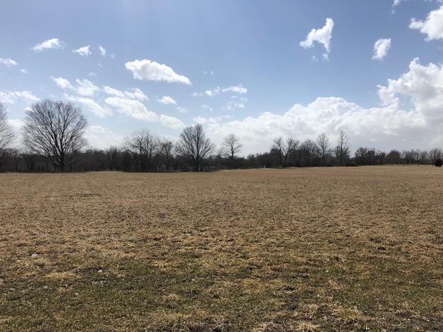 98 Prairie Acres, MONTICELLO, IL 61856 (MLS #10308088) :: Ryan Dallas Real Estate