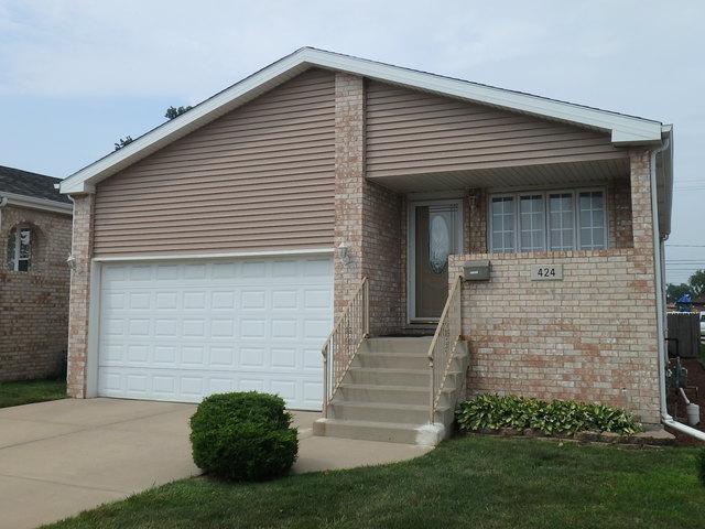 424 Saginaw Avenue, Calumet City, IL 60409 (MLS #10308352) :: HomesForSale123.com
