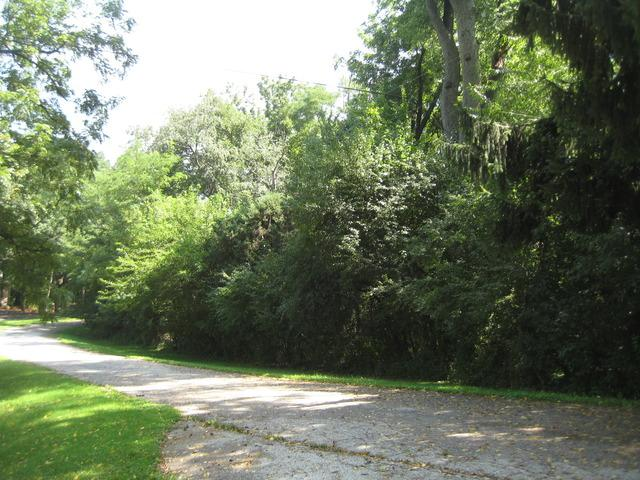 27110 W Roberts Road, Lake Barrington, IL 60010 (MLS #10308869) :: HomesForSale123.com