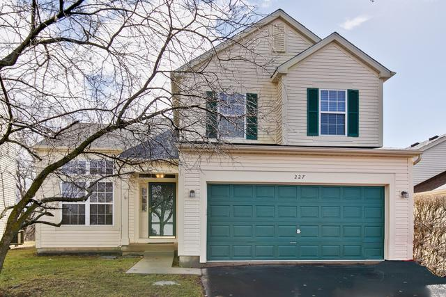 227 E Big Horn Drive, Hainesville, IL 60030 (MLS #10309078) :: Baz Realty Network | Keller Williams Preferred Realty