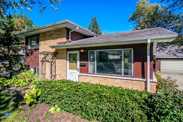 326 Winnebago Street, Park Forest, IL 60466 (MLS #10309321) :: HomesForSale123.com