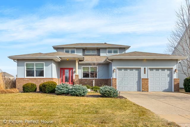 14205 Chalk Hill Road, Plainfield, IL 60544 (MLS #10309412) :: Helen Oliveri Real Estate