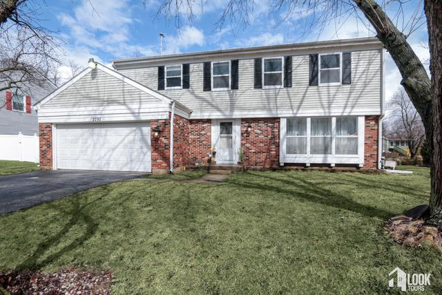 2292 Pontiac Circle, Naperville, IL 60565 (MLS #10309942) :: The Dena Furlow Team - Keller Williams Realty
