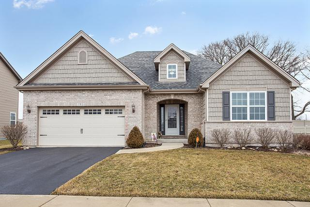 793 W Mystic Lane, Romeoville, IL 60446 (MLS #10310137) :: The Dena Furlow Team - Keller Williams Realty