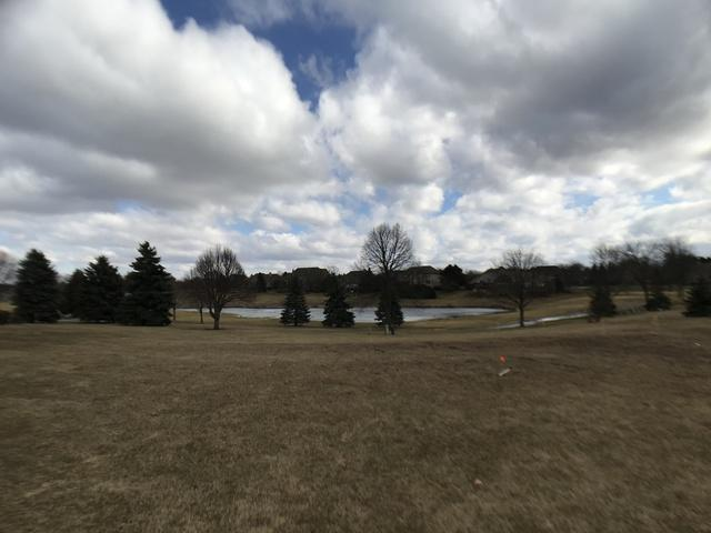 220 Boulder Drive, Lake In The Hills, IL 60156 (MLS #10310198) :: Ryan Dallas Real Estate