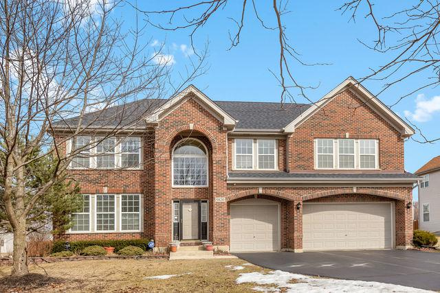 5820 Providence Drive, Hoffman Estates, IL 60192 (MLS #10310298) :: The Dena Furlow Team - Keller Williams Realty