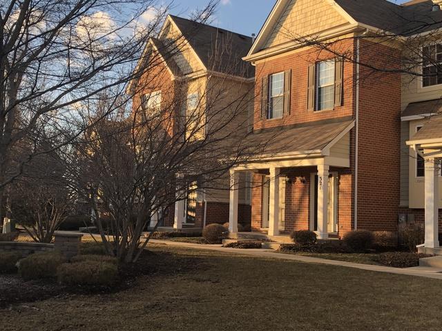 319 Timber Ridge Court, Joliet, IL 60431 (MLS #10310664) :: Helen Oliveri Real Estate