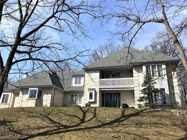 3 Old Tamarack Lane, Orland Park, IL 60462 (MLS #10310678) :: HomesForSale123.com