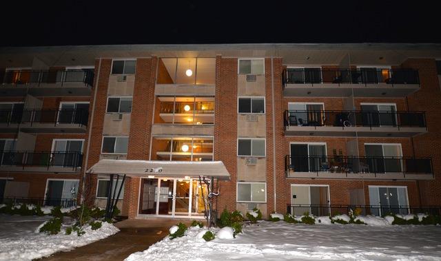 2210 S Goebbert Street #334, Arlington Heights, IL 60005 (MLS #10311089) :: HomesForSale123.com