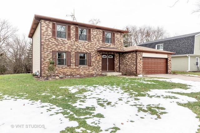 1297 W New Britton Drive, Hoffman Estates, IL 60192 (MLS #10311346) :: Baz Realty Network | Keller Williams Preferred Realty