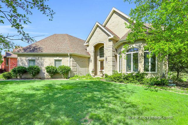 16229 Wildwood Lane, Homer Glen, IL 60491 (MLS #10311405) :: Baz Realty Network   Keller Williams Preferred Realty