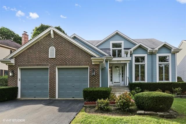 253 Southfield Drive, Vernon Hills, IL 60061 (MLS #10311409) :: Helen Oliveri Real Estate