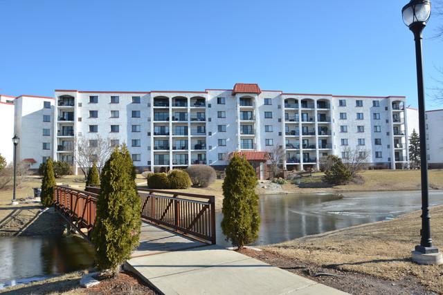 375 Plum Creek Drive #301, Wheeling, IL 60090 (MLS #10311555) :: Helen Oliveri Real Estate