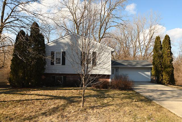 612 Front Street, Lisle, IL 60532 (MLS #10311622) :: Baz Realty Network | Keller Williams Preferred Realty
