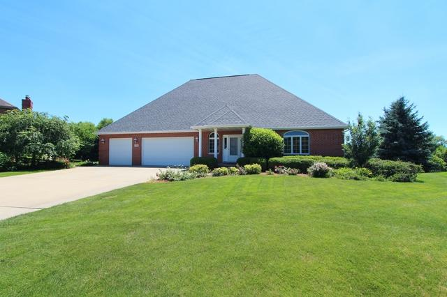 2576 Creekside Lane, Morris, IL 60450 (MLS #10311732) :: HomesForSale123.com
