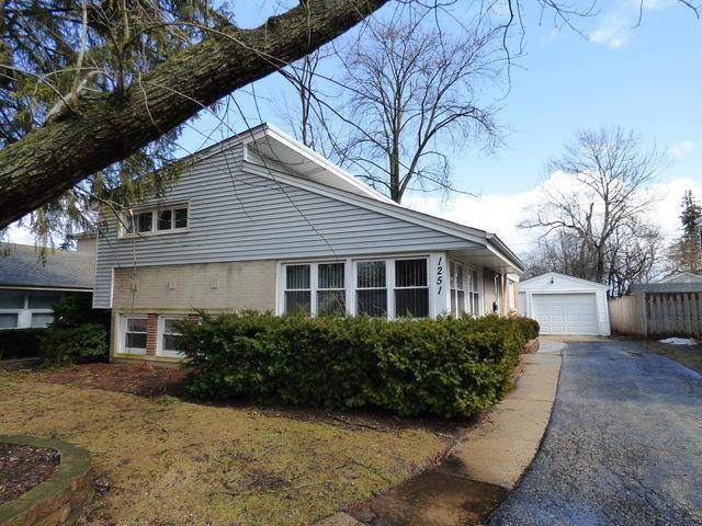 1251 Ferndale Avenue, Highland Park, IL 60035 (MLS #10311966) :: HomesForSale123.com