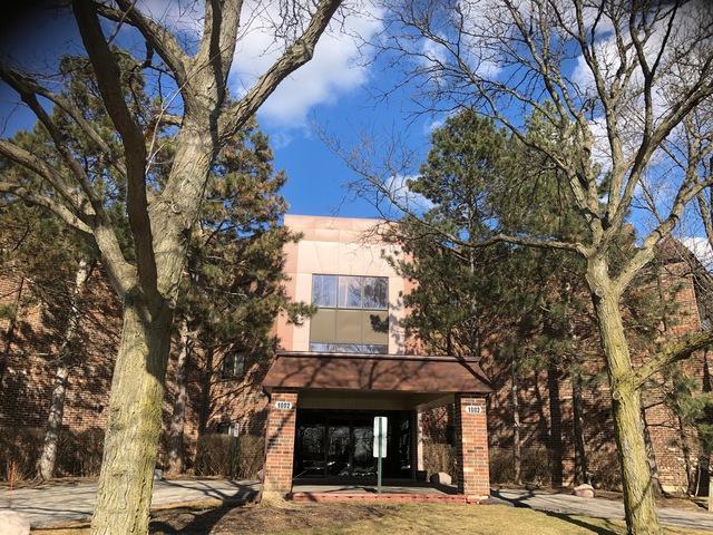 1002 Castilian Court B108, Glenview, IL 60025 (MLS #10311989) :: Helen Oliveri Real Estate